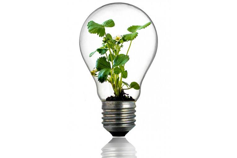 Всеки ден трябва да е Innovation Explorer Day